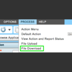 Costpoint Extensibility CSV from UI. Deltek Enterprise Cloud CP711