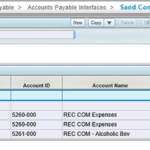 Costpoint Extensibility Study: Application/Module Design for Wildcard Assignments & Integration File